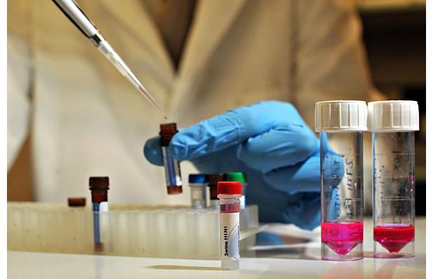 Разработана новейшая вакцина против брюшного тифа