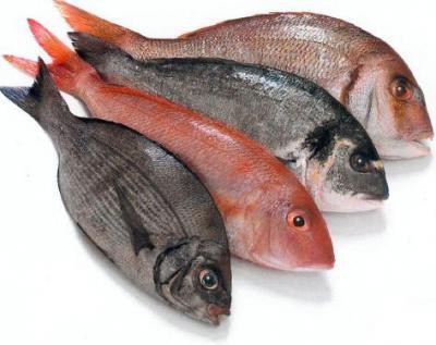 Повышенное потребление рыбы может увеличить уровень «хорошего» холестерина