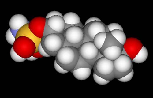 Ученые представили новый препарат от эндометриоза