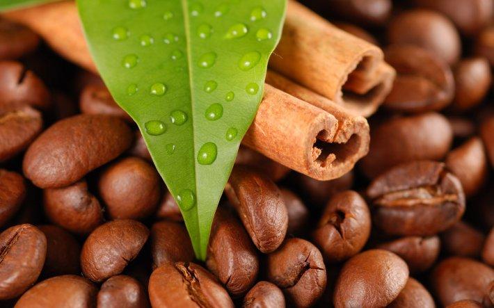 Кофеин по-разному влияет на мальчиков и девочек