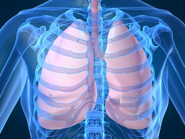 Биологические часы влияют на заболевания легких