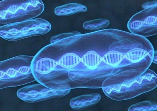 Ученые нашли новые гены, участвующие в развитие рака толстой кишки