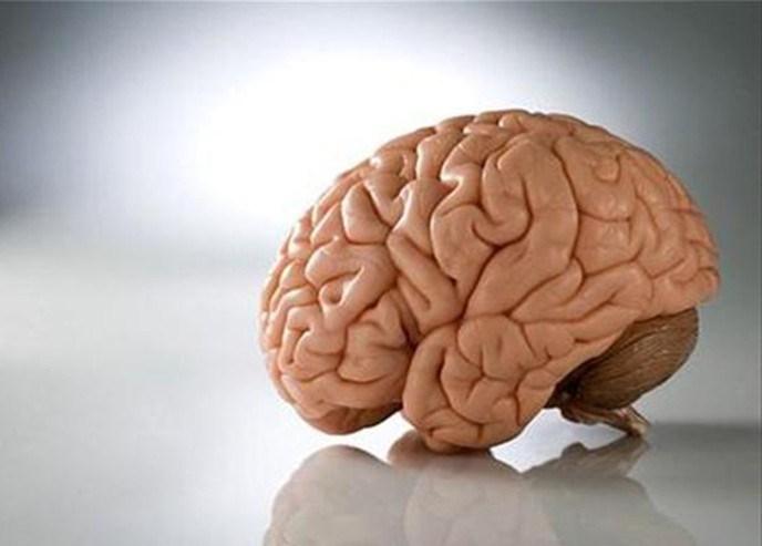 Новые знания о гематоэнцефалическом барьере в мозге
