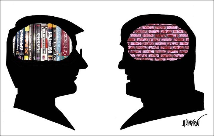 Самые распространенные мифы о головном мозге