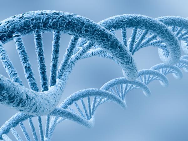 Эпигенетические изменения могут управлять раком