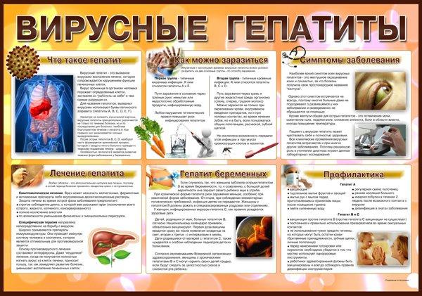 12436221-profilaktika-lecheniya-pecheni-karsilom